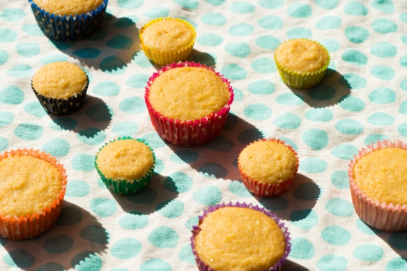 Birthday Cupcakes__No Sugarless Gum