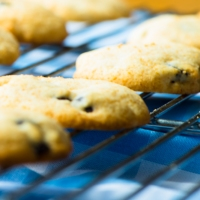 Fructose Malabsorption Recipes: Grain-Free Chocolate Chip Cookies