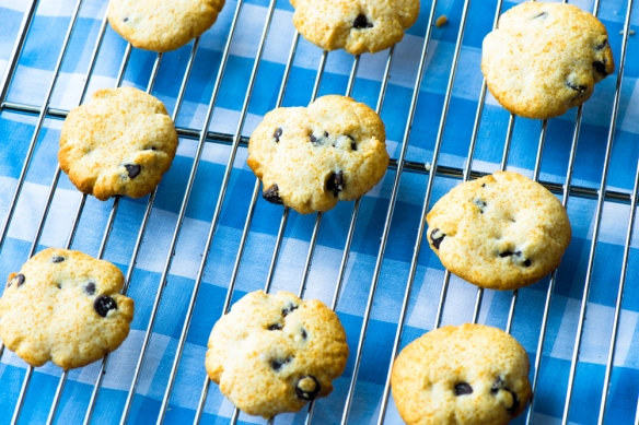 Grain-Free Chocolate Chip Cookies3__No Sugarless Gum