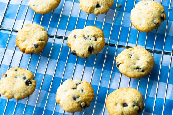 Grain-Free Chocolate Chip Cookies3__No Sugarless Gum